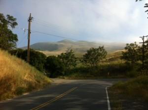 Biking California Photo: MMaggenti